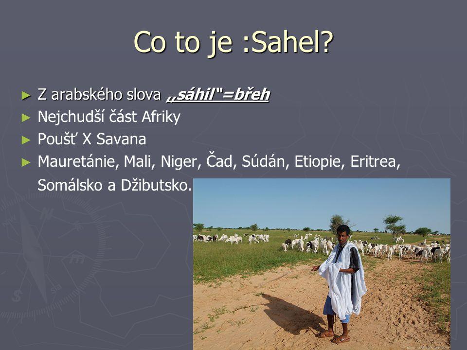 Co to je :Sahel Z arabského slova ,,sáhil =břeh Nejchudší část Afriky