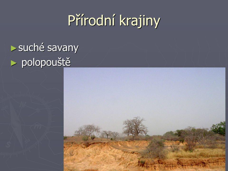 Přírodní krajiny suché savany polopouště