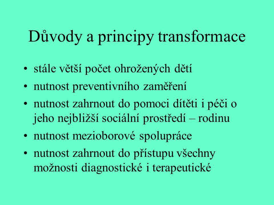 Důvody a principy transformace