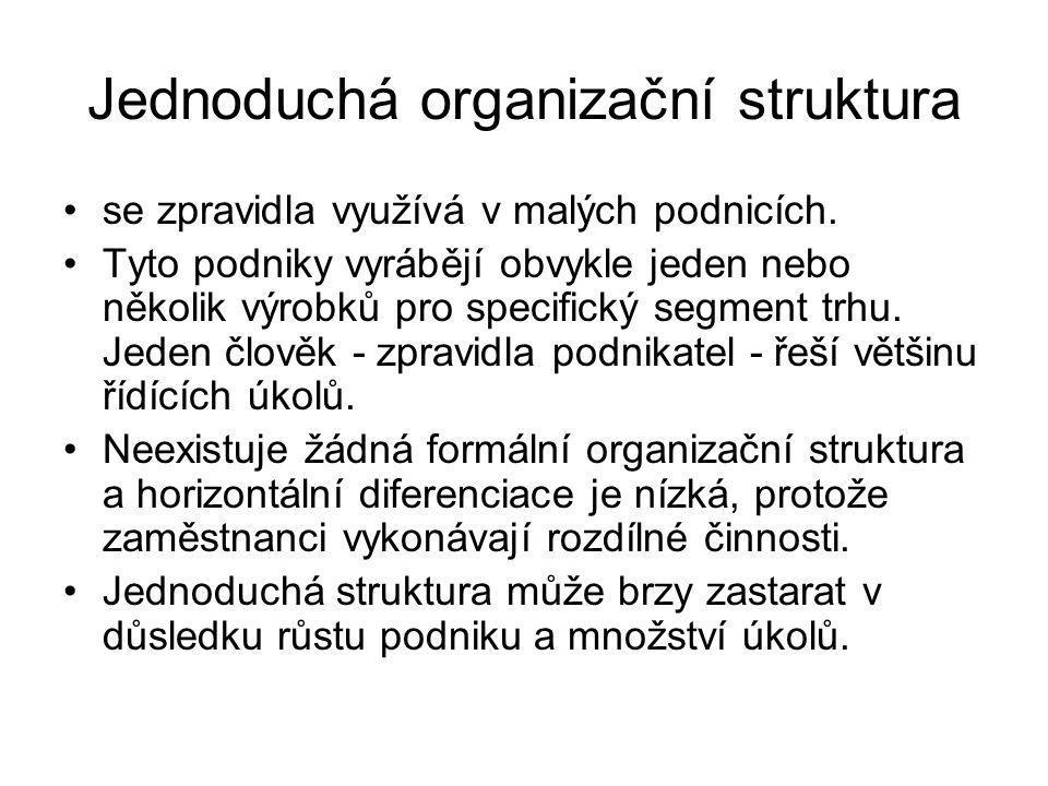 Jednoduchá organizační struktura