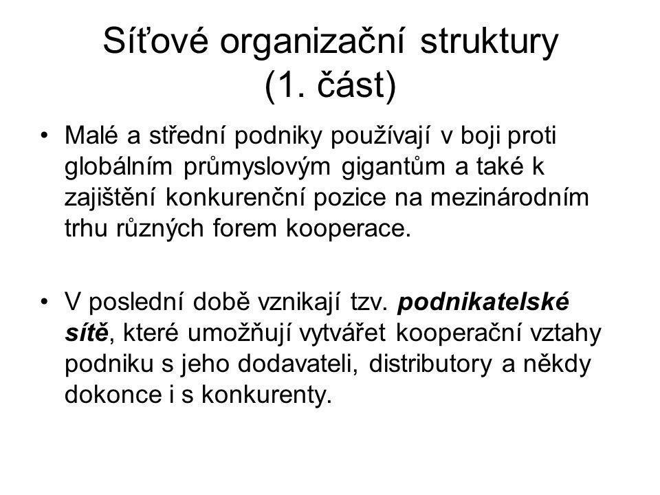Síťové organizační struktury (1. část)