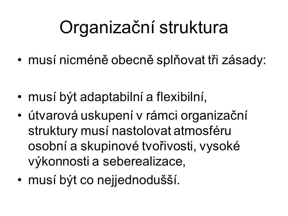 Organizační struktura