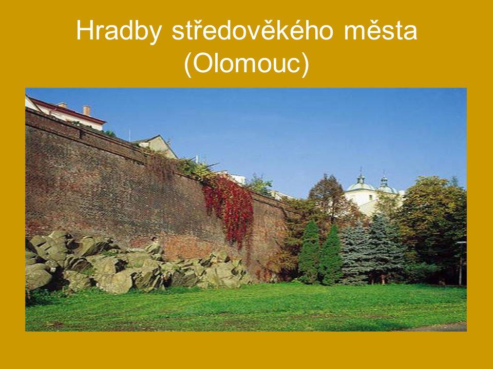 Hradby středověkého města (Olomouc)