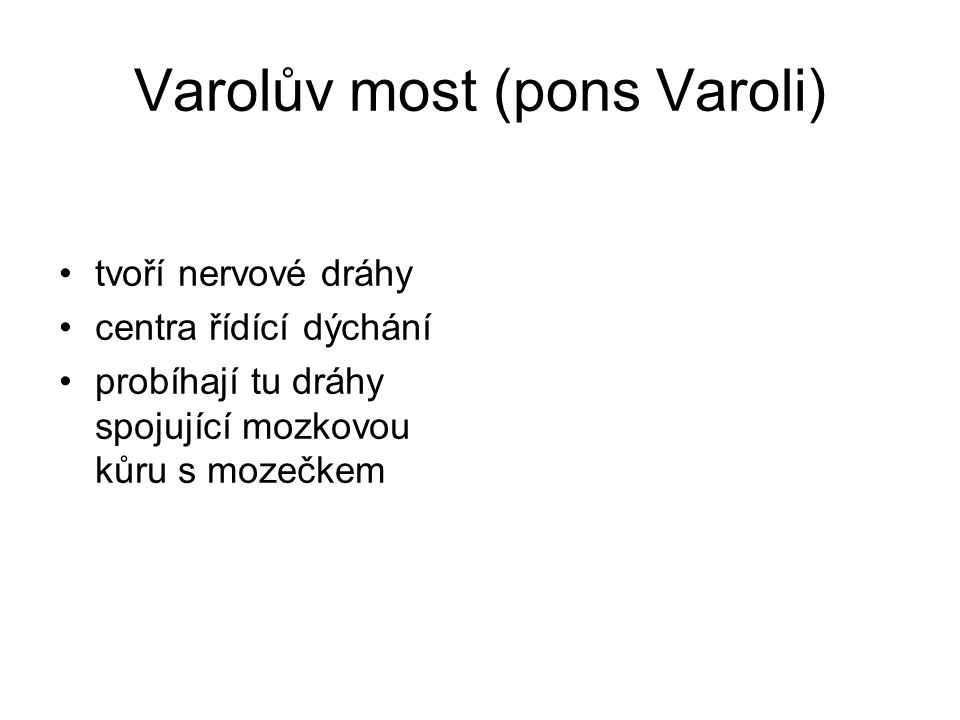 Varolův most (pons Varoli)
