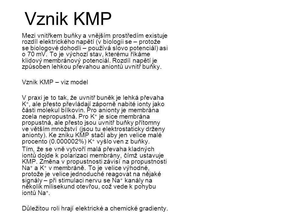 Vznik KMP