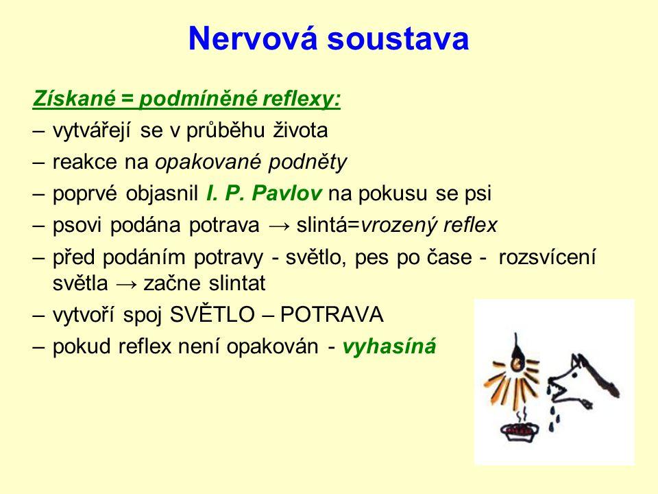 Nervová soustava Vrozené reflexy: od narození, nemusím se je učit