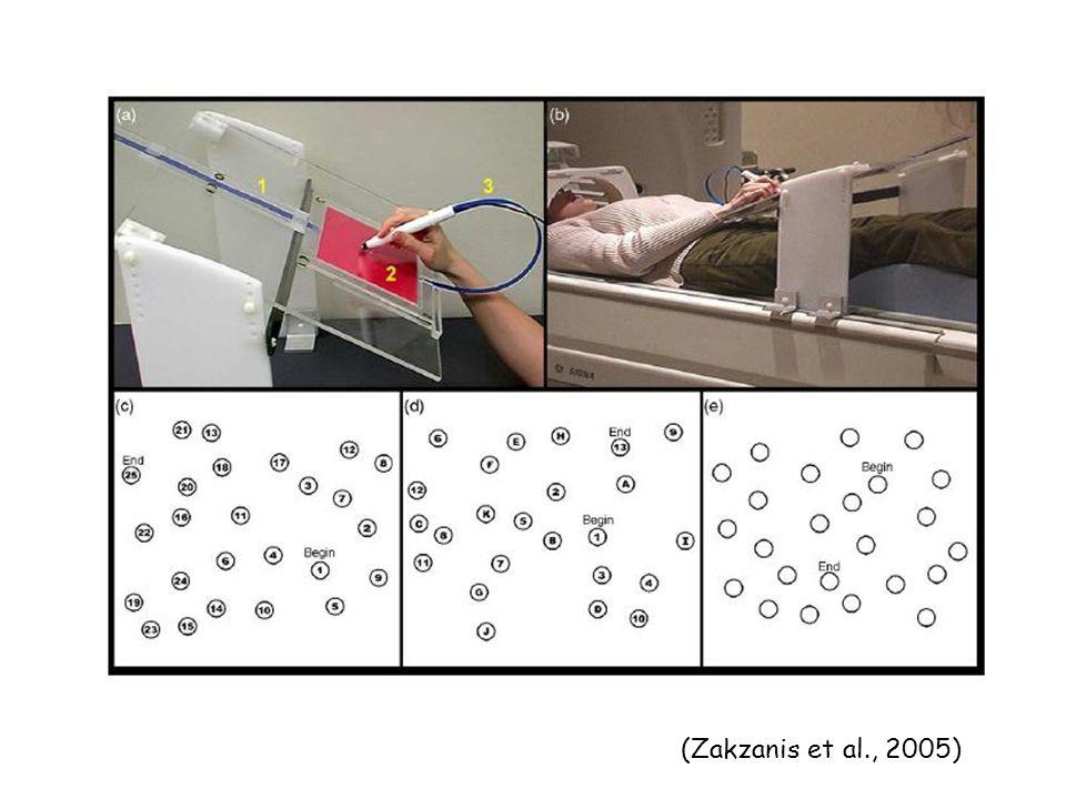 (Zakzanis et al., 2005)