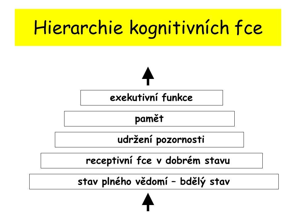 Hierarchie kognitivních fce