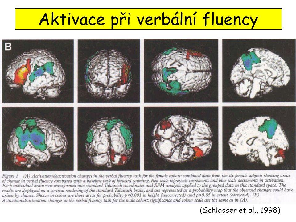 Aktivace při verbální fluency