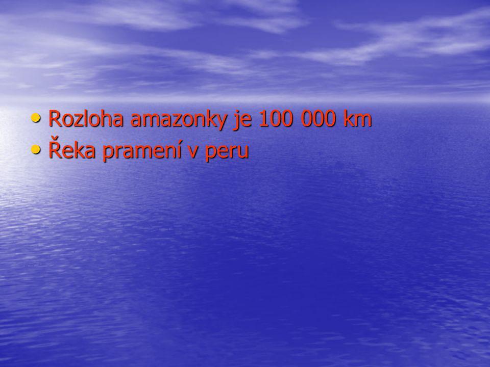 Rozloha amazonky je 100 000 km Řeka pramení v peru