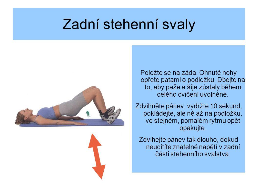 Zadní stehenní svaly