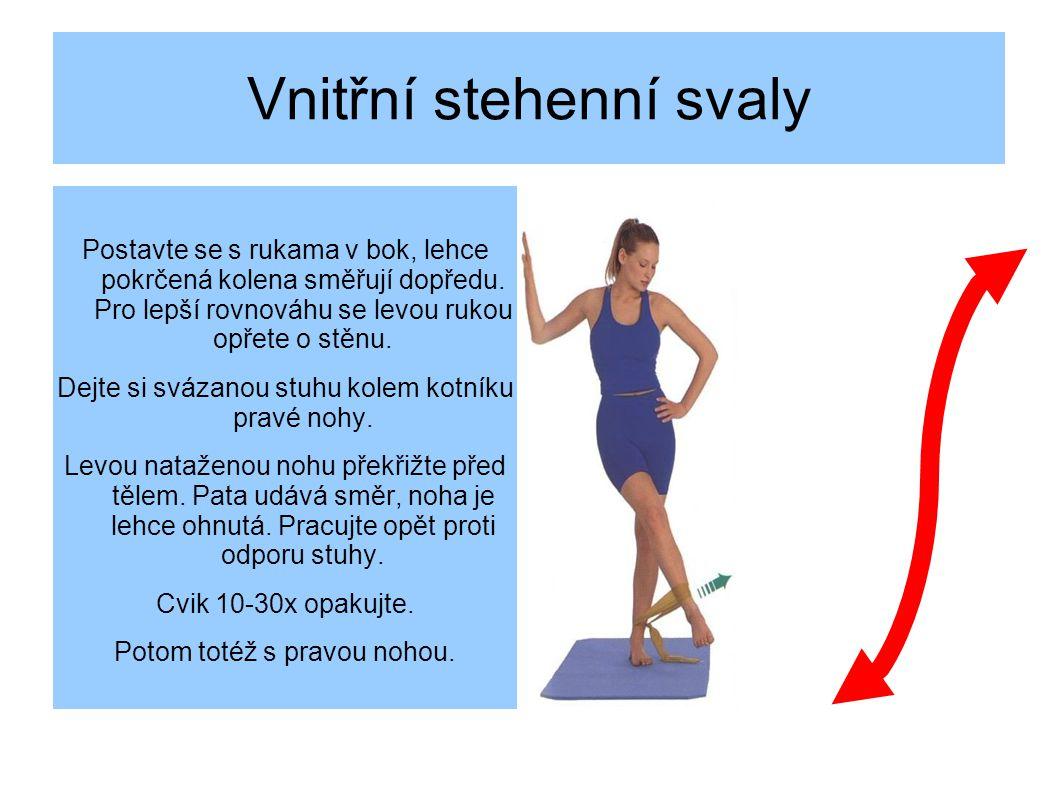Vnitřní stehenní svaly