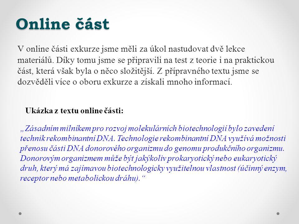 Online část