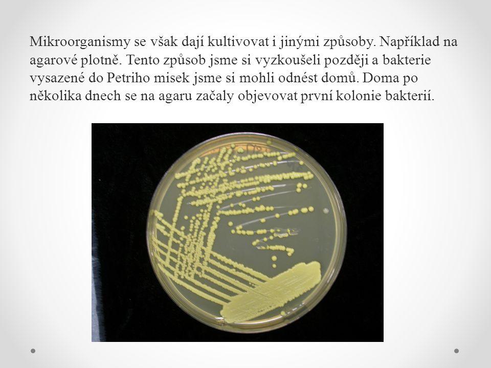 Mikroorganismy se však dají kultivovat i jinými způsoby