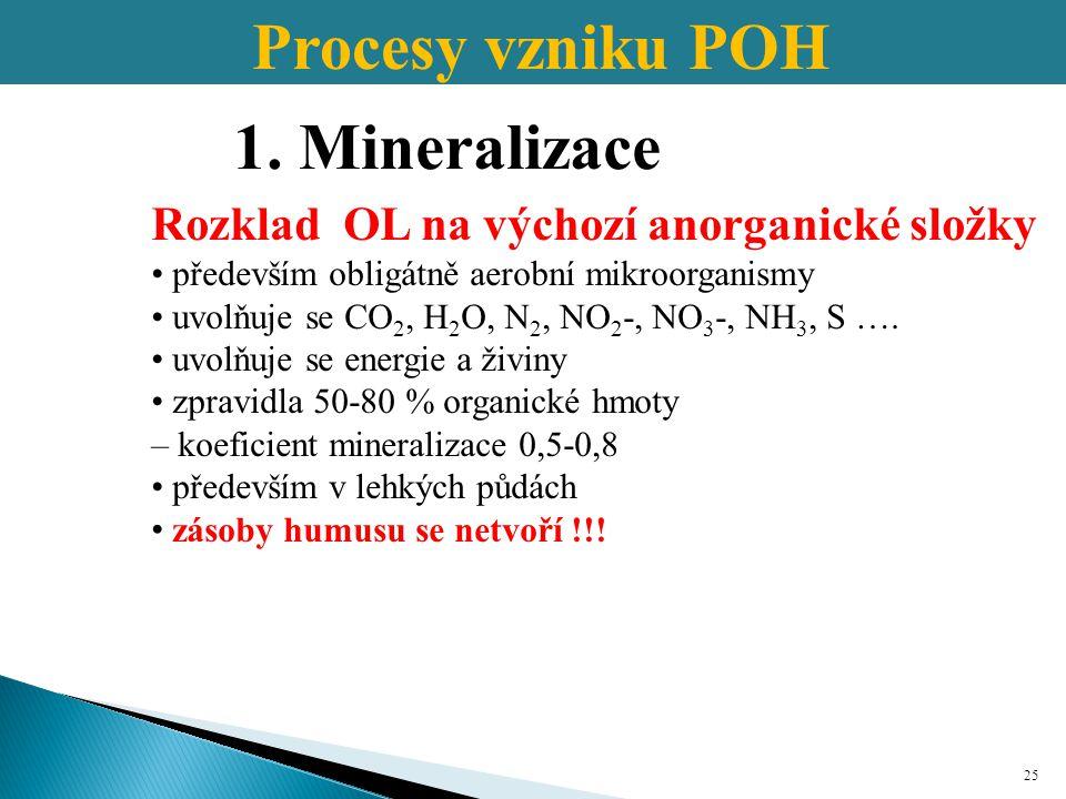 Procesy vzniku POH 1. Mineralizace