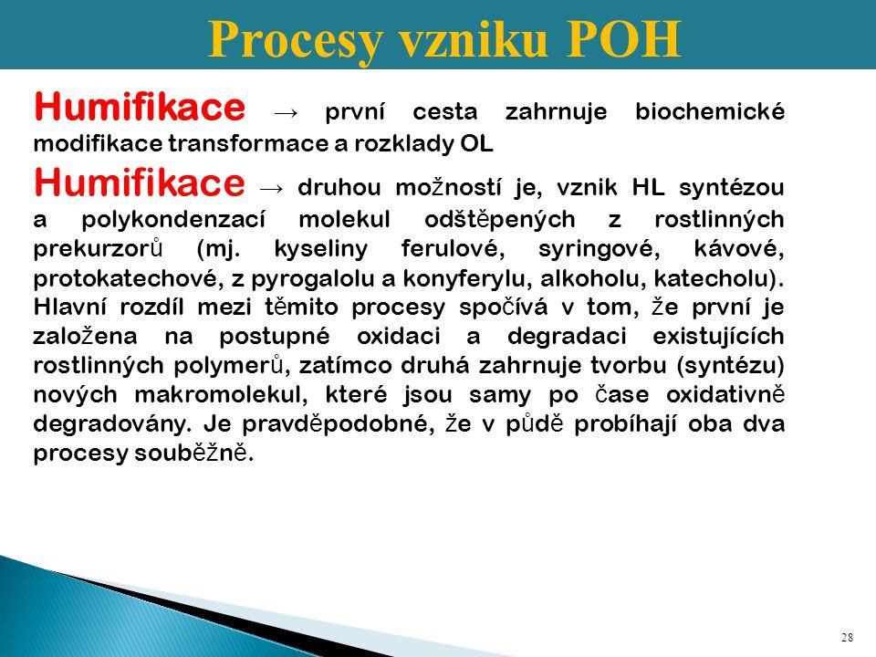 Procesy vzniku POH Humifikace → první cesta zahrnuje biochemické modifikace transformace a rozklady OL.