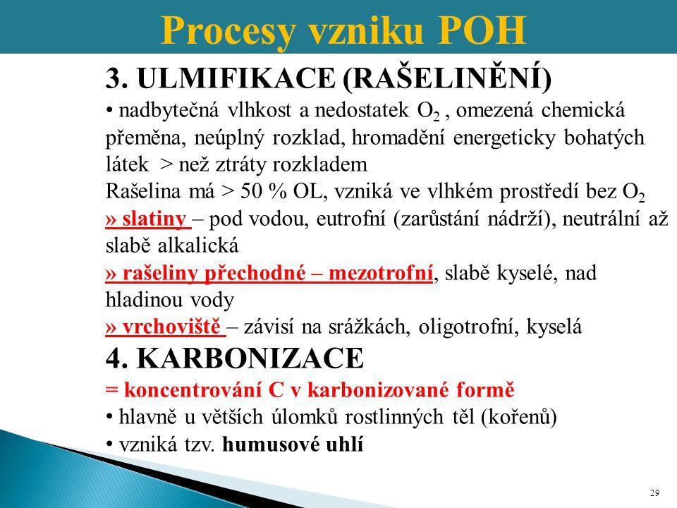 Procesy vzniku POH 3. ULMIFIKACE (RAŠELINĚNÍ) 4. KARBONIZACE