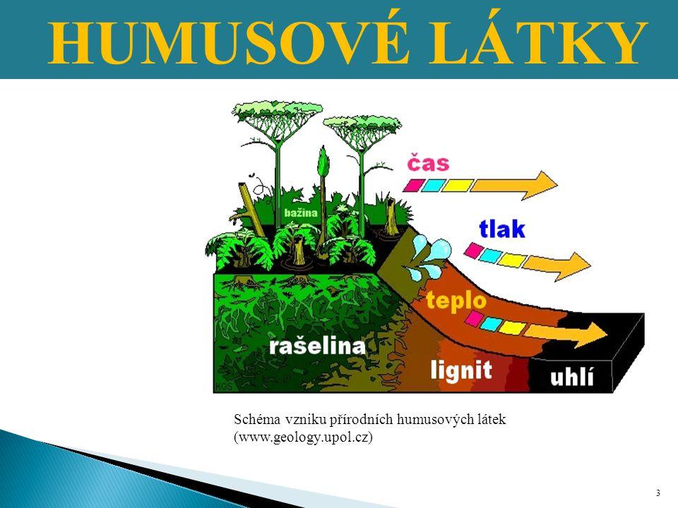 HUMUSOVÉ LÁTKY Schéma vzniku přírodních humusových látek (www.geology.upol.cz)