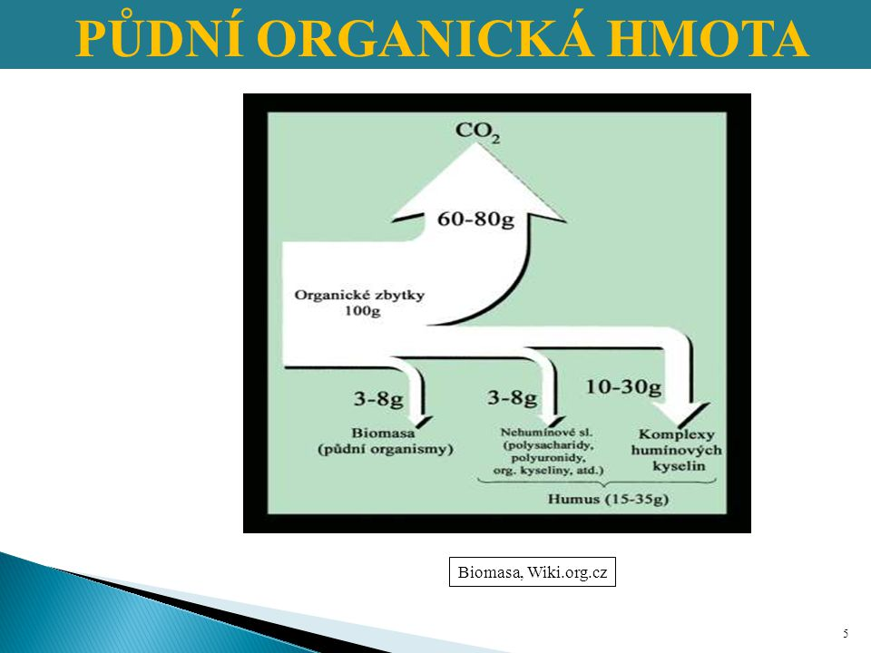 PŮDNÍ ORGANICKÁ HMOTA Biomasa, Wiki.org.cz