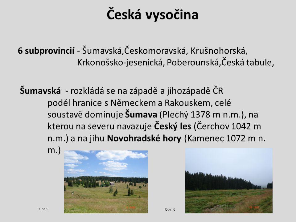 Česká vysočina 6 subprovincií - Šumavská,Českomoravská, Krušnohorská, Krkonošsko-jesenická, Poberounská,Česká tabule,
