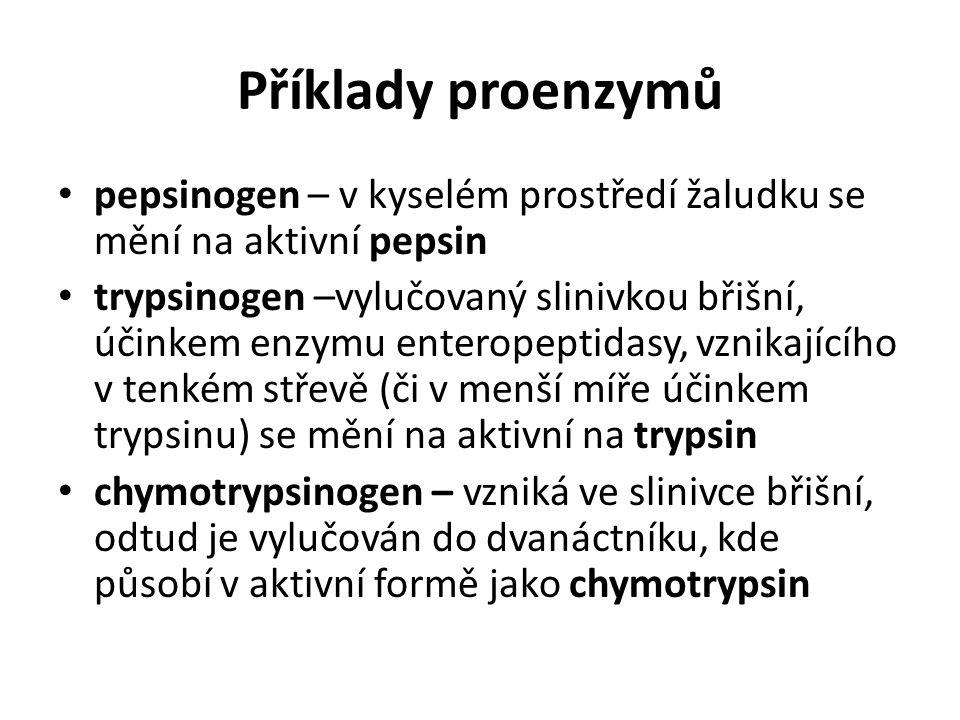 Příklady proenzymů pepsinogen – v kyselém prostředí žaludku se mění na aktivní pepsin.