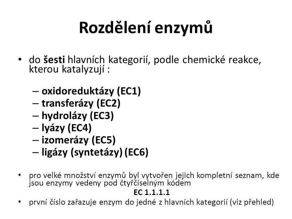 Rozdělení enzymů do šesti hlavních kategorií, podle chemické reakce, kterou katalyzují : oxidoreduktázy (EC1)