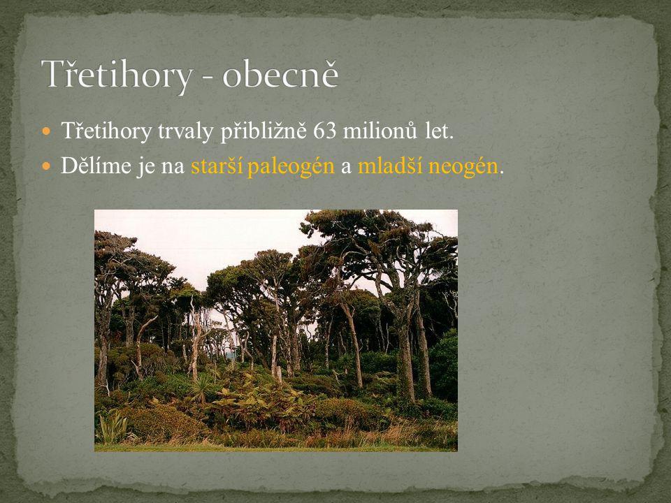 Třetihory - obecně Třetihory trvaly přibližně 63 milionů let.
