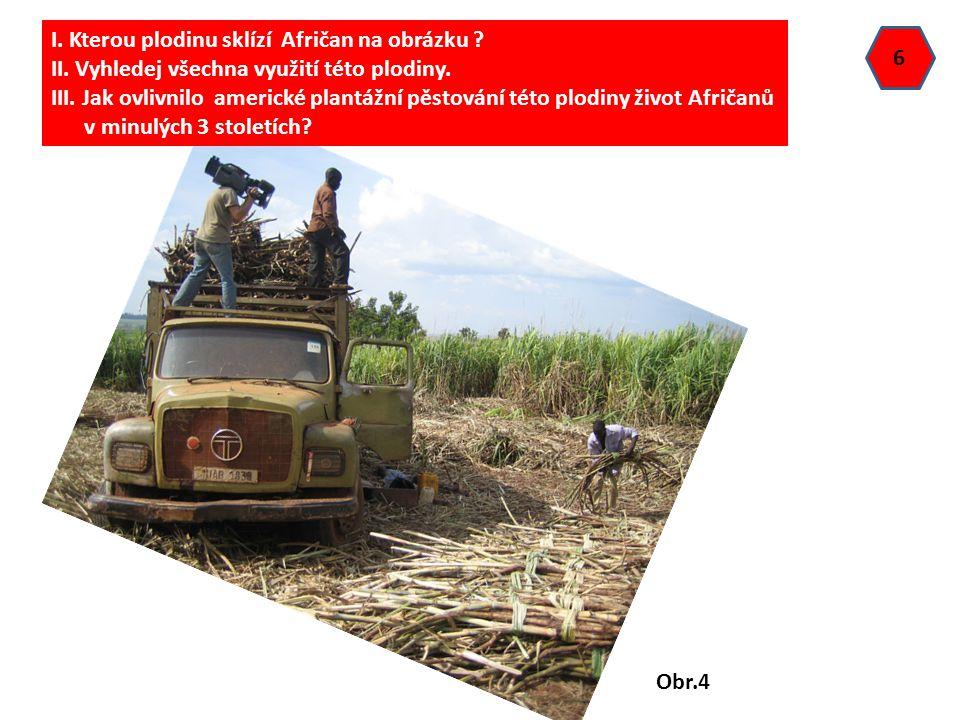 I. Kterou plodinu sklízí Afričan na obrázku