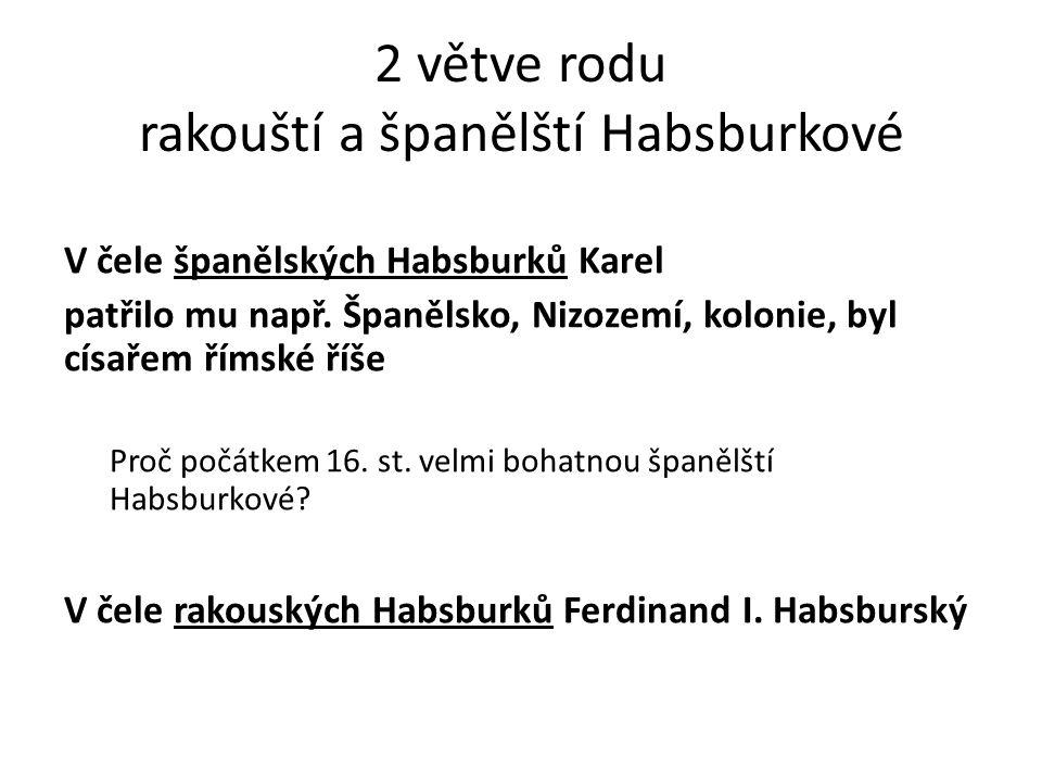 2 větve rodu rakouští a španělští Habsburkové