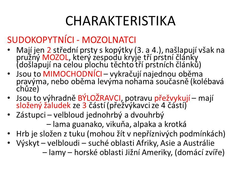 CHARAKTERISTIKA SUDOKOPYTNÍCI - MOZOLNATCI