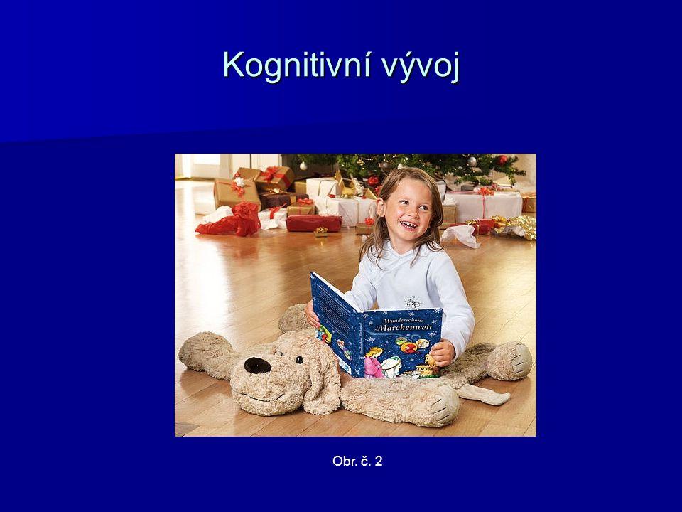 Kognitivní vývoj Obr. č. 2