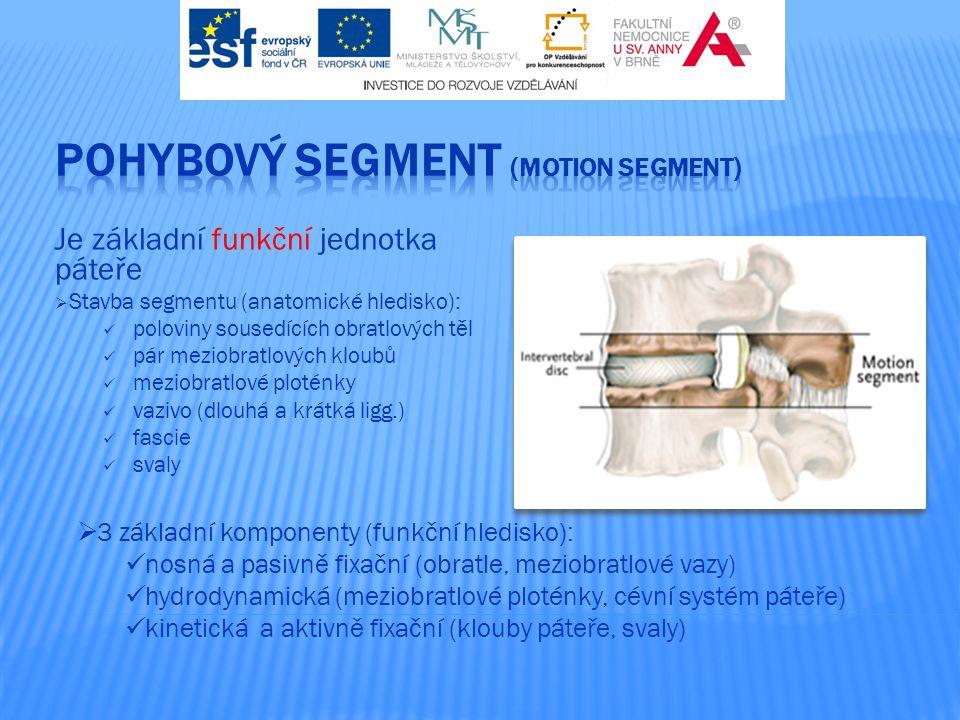 POHYBOVÝ SEGMENT (motion segment)