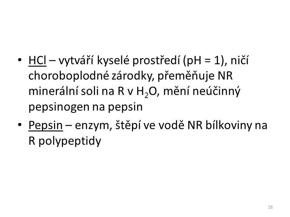 HCl – vytváří kyselé prostředí (pH = 1), ničí choroboplodné zárodky, přeměňuje NR minerální soli na R v H2O, mění neúčinný pepsinogen na pepsin