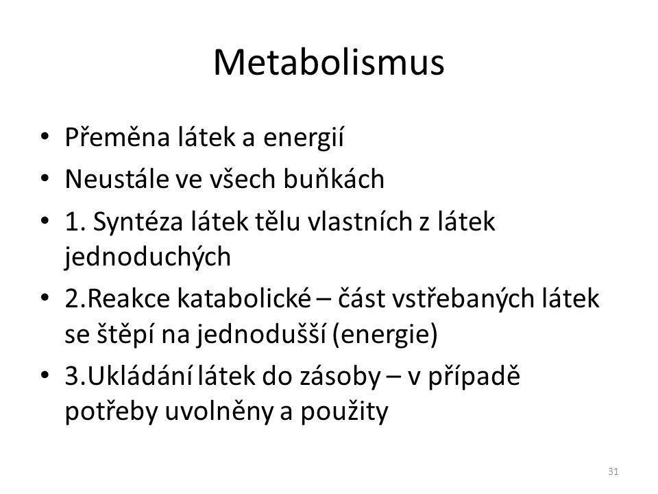Metabolismus Přeměna látek a energií Neustále ve všech buňkách