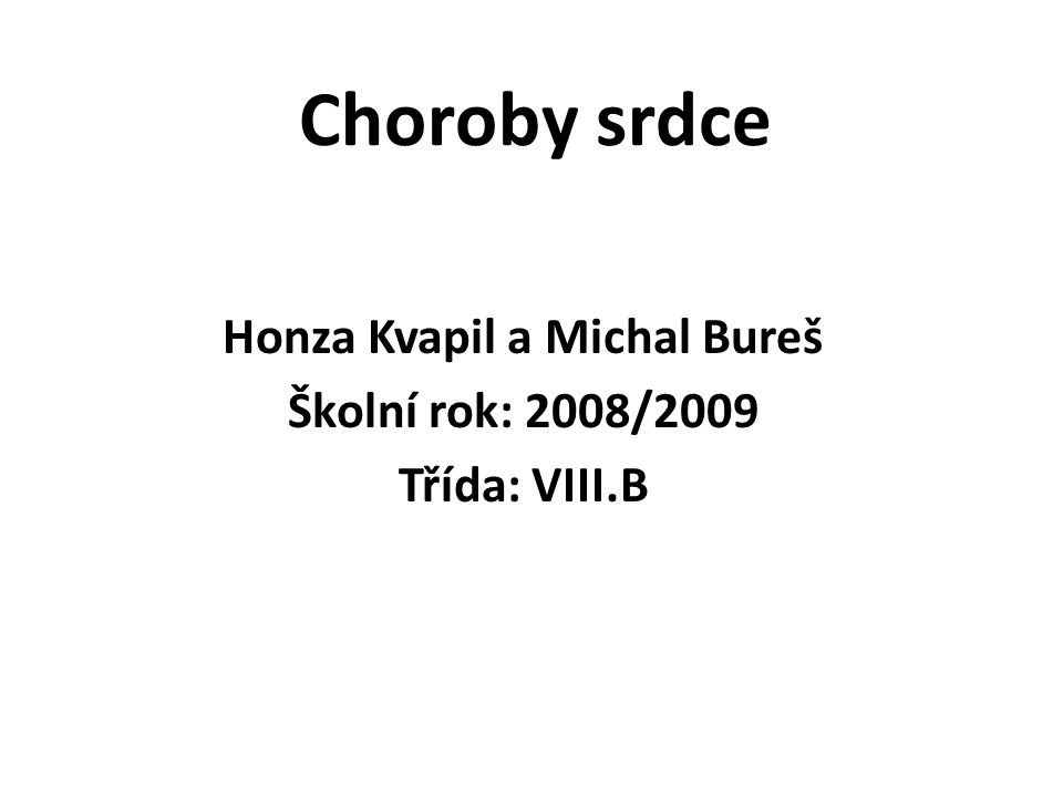 Honza Kvapil a Michal Bureš Školní rok: 2008/2009 Třída: VIII.B