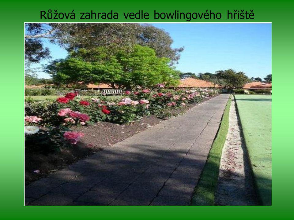 Růžová zahrada vedle bowlingového hřiště