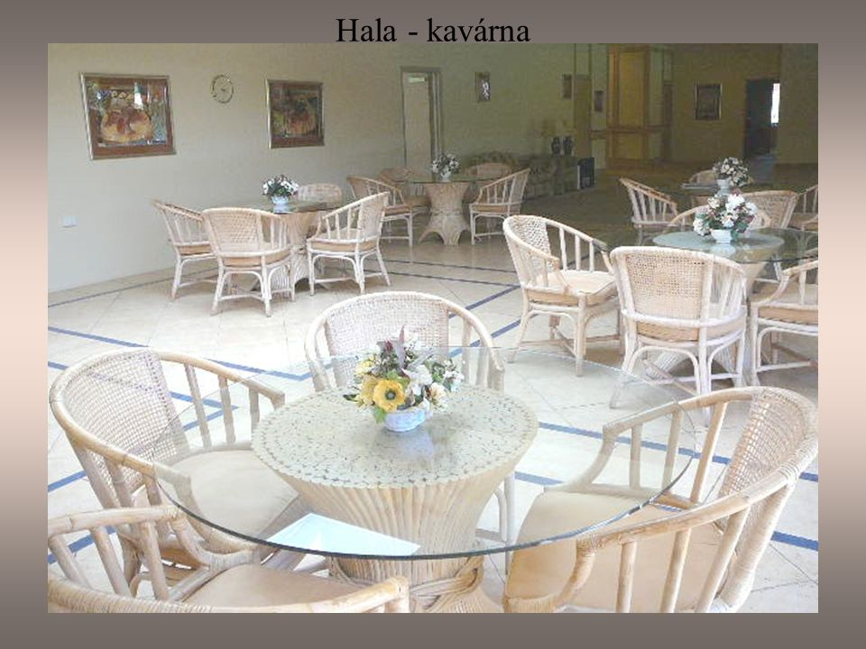 Hala - kavárna