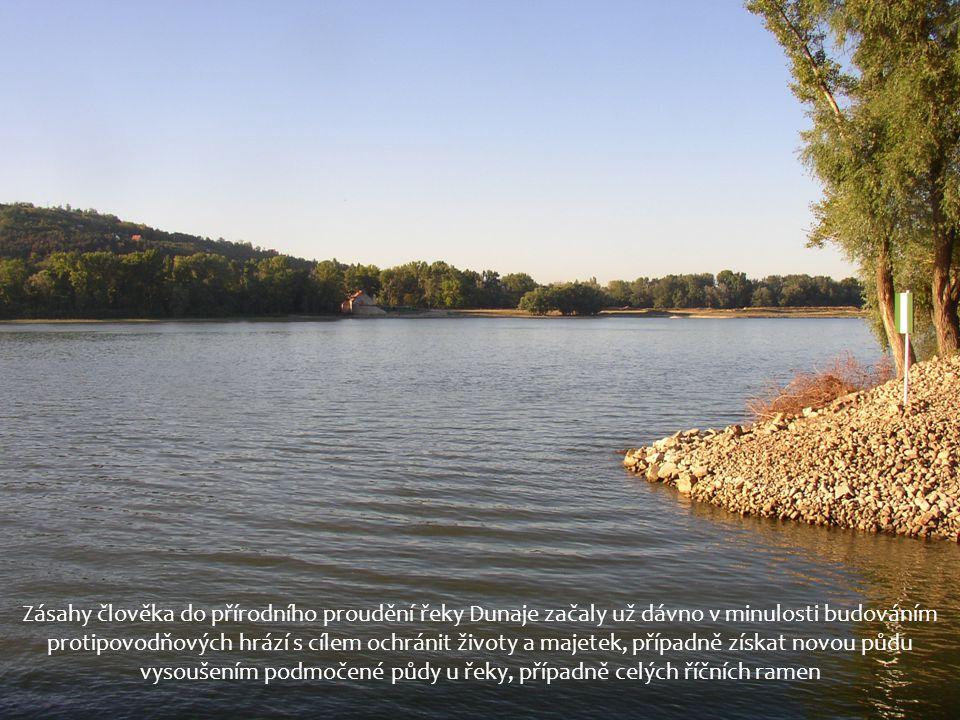 Zásahy člověka do přírodního proudění řeky Dunaje začaly už dávno v minulosti budováním protipovodňových hrází s cílem ochránit životy a majetek, případně získat novou půdu vysoušením podmočené půdy u řeky, případně celých říčních ramen