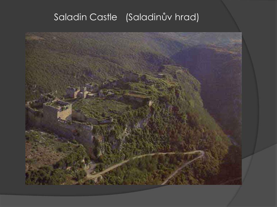 Saladin Castle (Saladinův hrad)