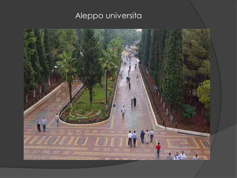 Aleppo universita