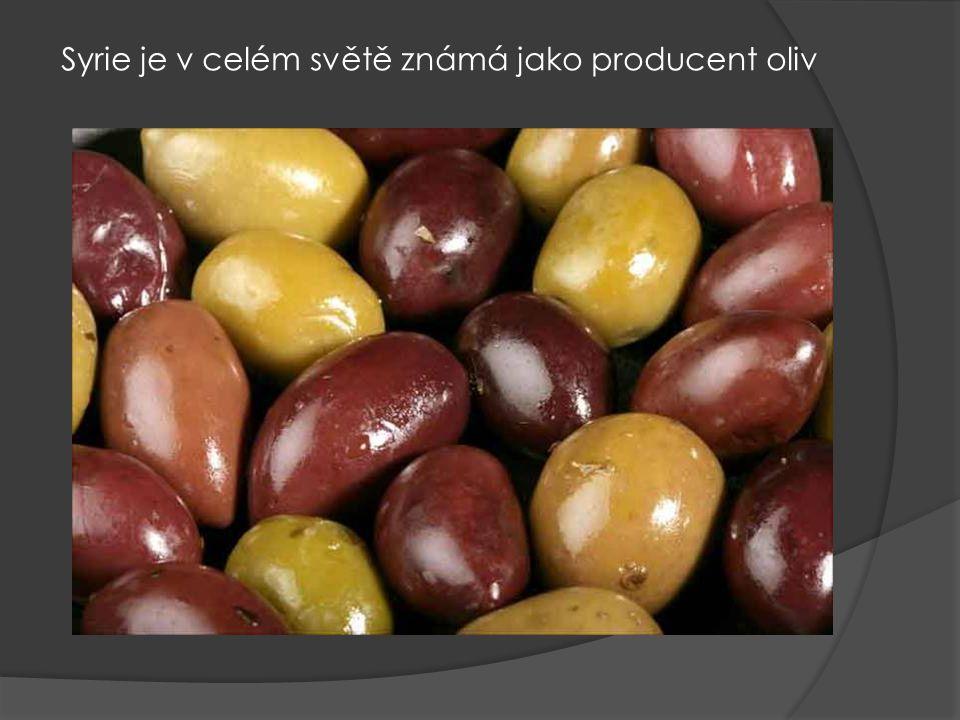 Syrie je v celém světě známá jako producent oliv