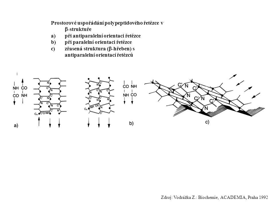 Prostorové uspořádání polypeptidového řetězce v -struktuře