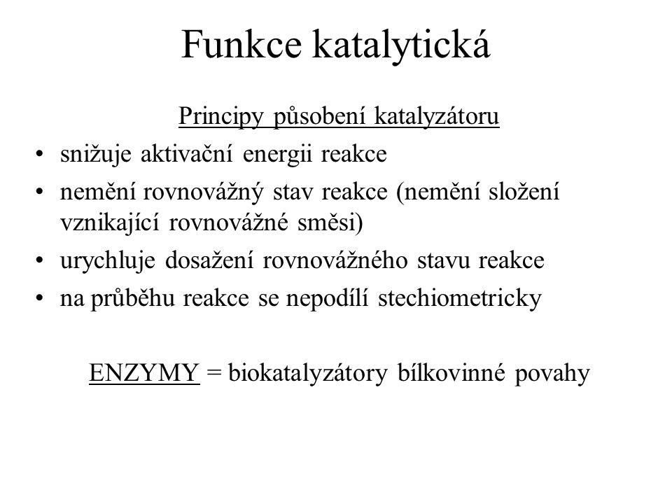Funkce katalytická Principy působení katalyzátoru