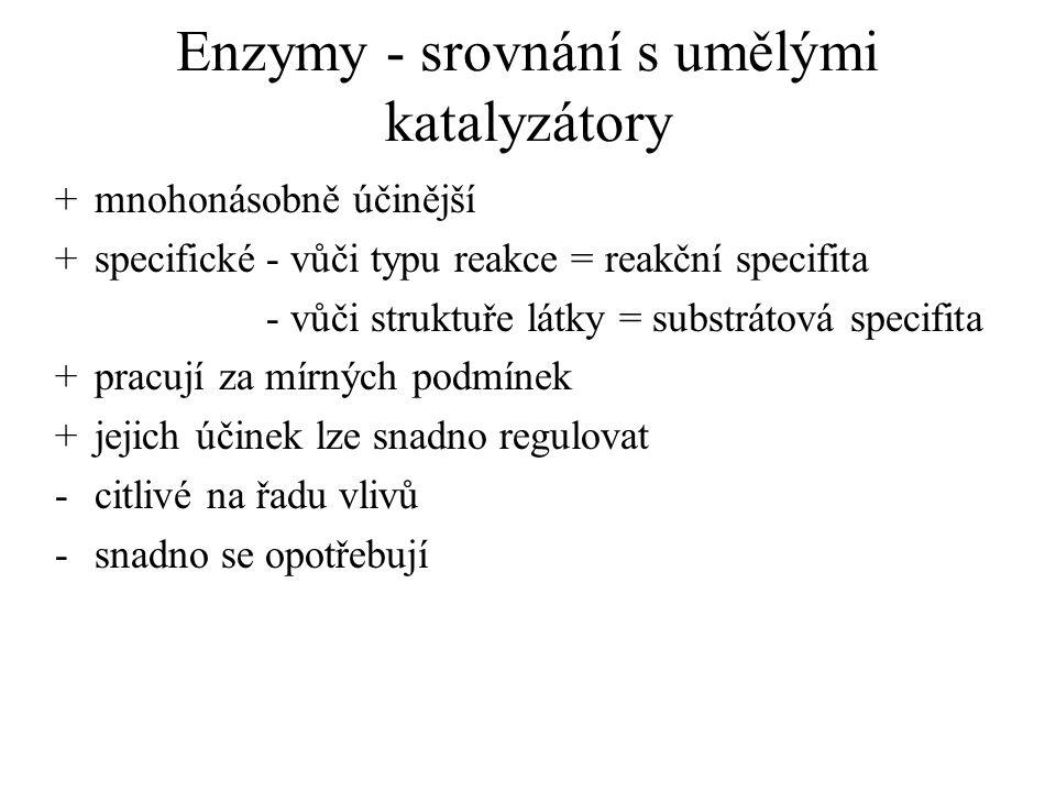 Enzymy - srovnání s umělými katalyzátory
