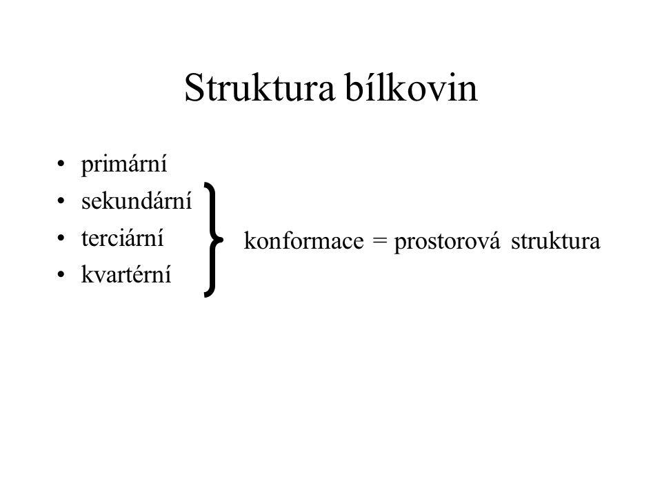 Struktura bílkovin primární sekundární terciární kvartérní