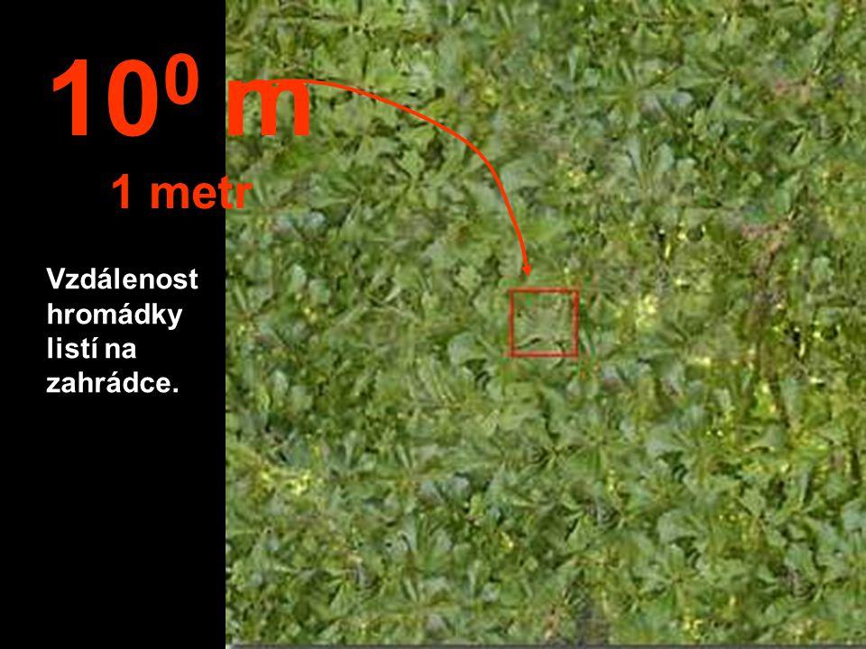 100 m 1 metr Vzdálenost hromádky listí na zahrádce.