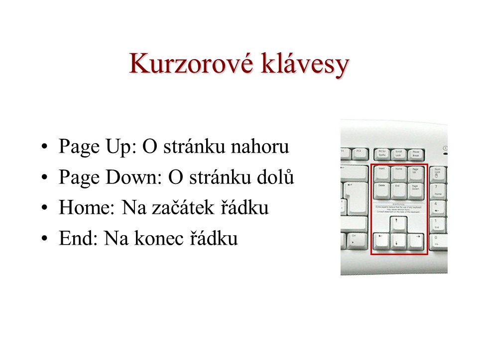 Kurzorové klávesy Page Up: O stránku nahoru Page Down: O stránku dolů