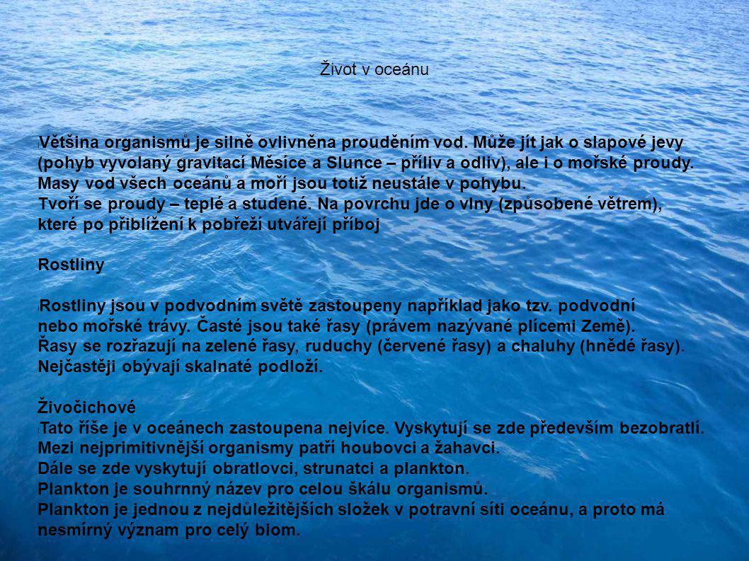 Život v oceánu Většina organismů je silně ovlivněna prouděním vod. Může jít jak o slapové jevy.