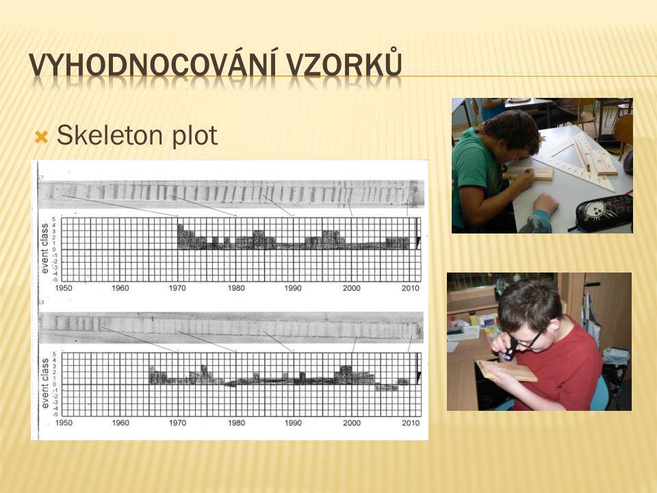 Vyhodnocování vzorků Skeleton plot