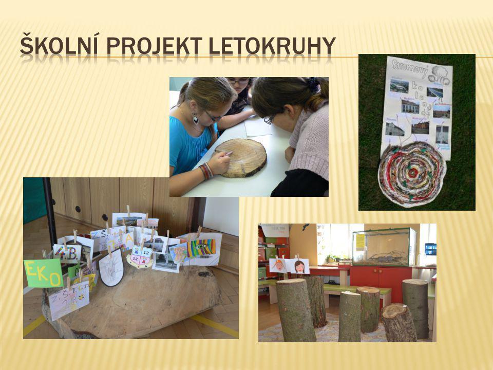 Školní projekt letokruhy
